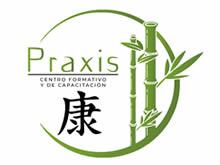 Praxis Centro Formativo y de Capacitación